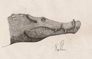 Kaprosucuhus by dinosaurusbrazil