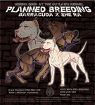 OUTLAWS' TOP DOGS | Breeding Reservations CLOSED