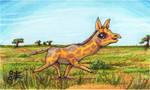 Giraffe for Fern