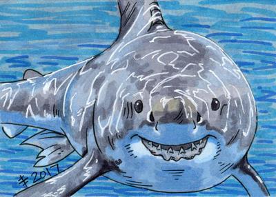 Birthdays December 2017 - Have A Shark by AnimeGirlMika