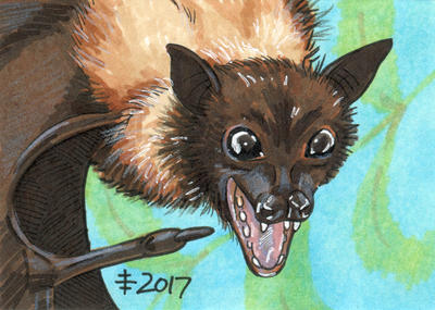 Birthdays December 2017 - Have A Bat