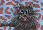 2017 Christmas Presents - Scotsman Cat
