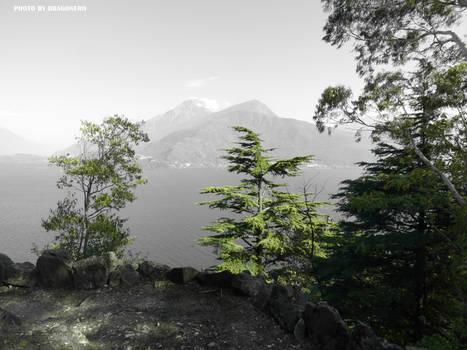 105-PUNTO COLORE-Giardini del Merlo