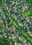 Green Road Tokyo