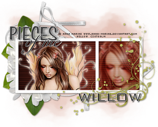 Pieces of Me by Willow-Hoop