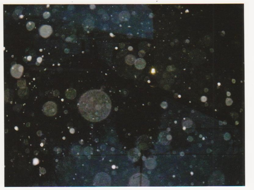 Blurry Snowflakes Stock by cosmicgallifrey