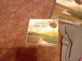 New Owl City 1 by cosmicgallifrey