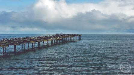 Reunion en medio del Mar by Soiden