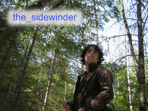 the-sidewinder's Profile Picture