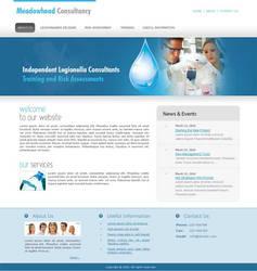 Meadowhead Consultancy website by designer-hassan