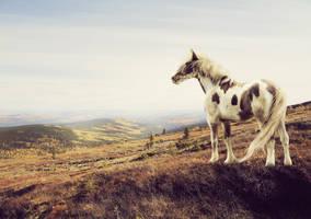Tundra Dreams v.1 by xglassraindrops