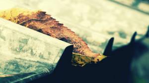golden leaf by 4rch0n