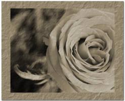 Old Valentine by Egil21