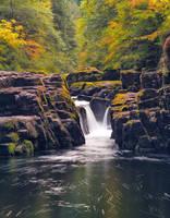 Brice Creek Trail by SpringfieldShtos