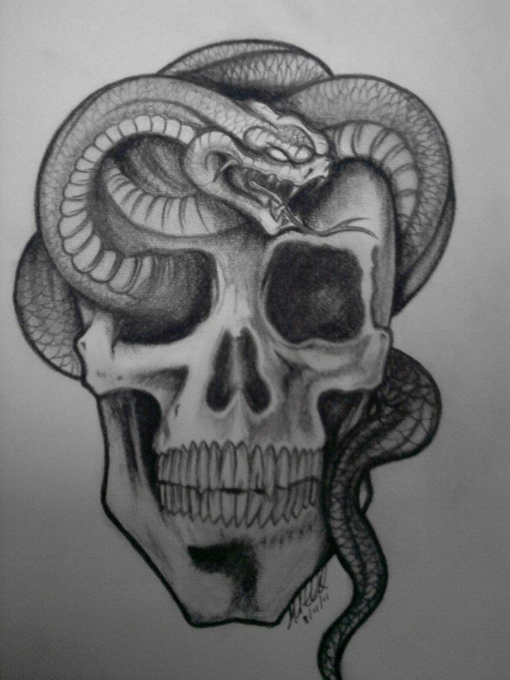 Skull And Snake Drawings | animalgals