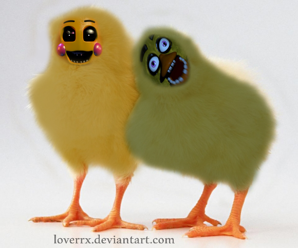 Cute chica and toy chica by 580x483