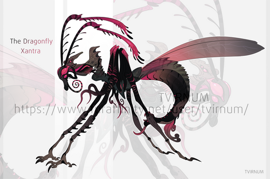 Xantra Dragonfly - Adopt Auction Open