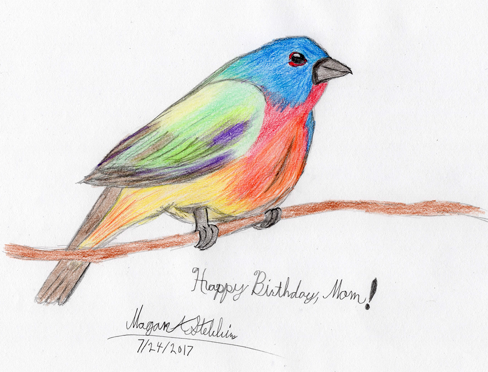 painted_bunting_by_maverick_werewolf-dbh