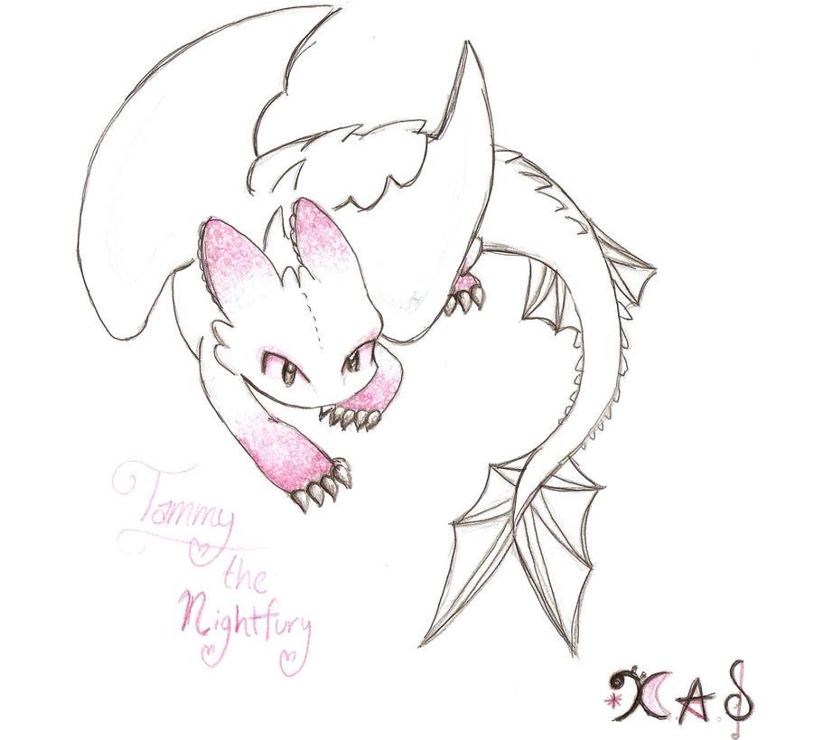Night Fury Drawing 15576 Loadtve