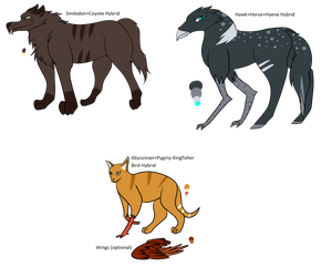 Aeon ARPG Adopts Hybrid Pack 4 by Painterqueen
