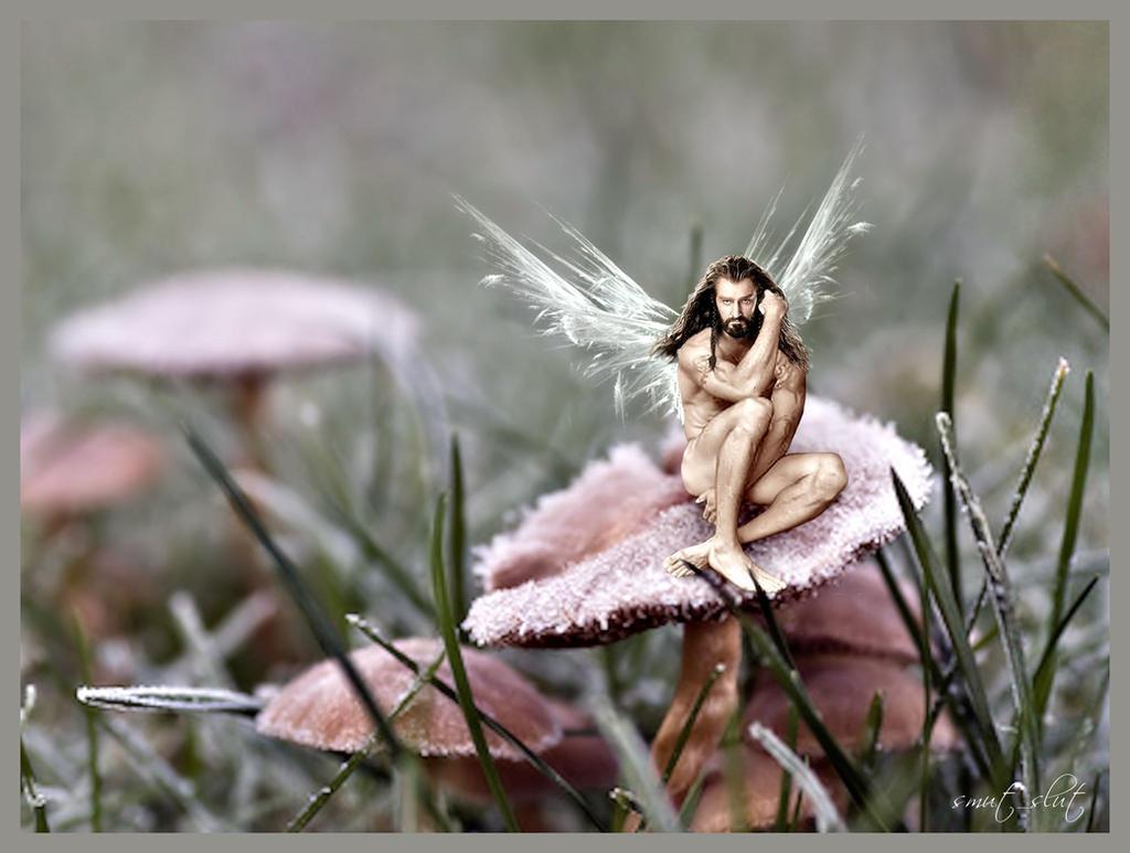 Fairy!Thorin by Smut-Slut