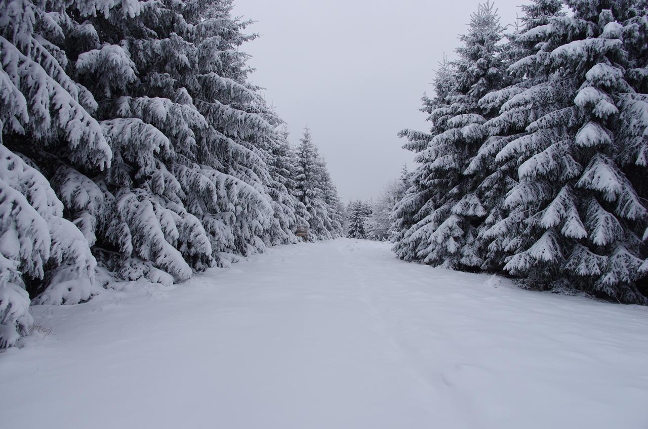 Snow road by a-kwiatkowski
