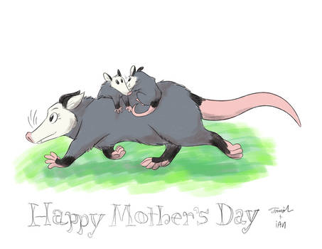 Mother's Day Opossum
