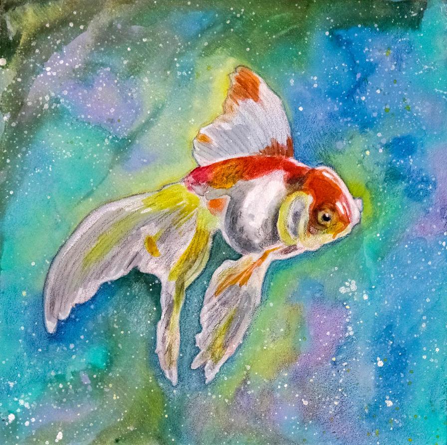 Goldfish by Tomolan