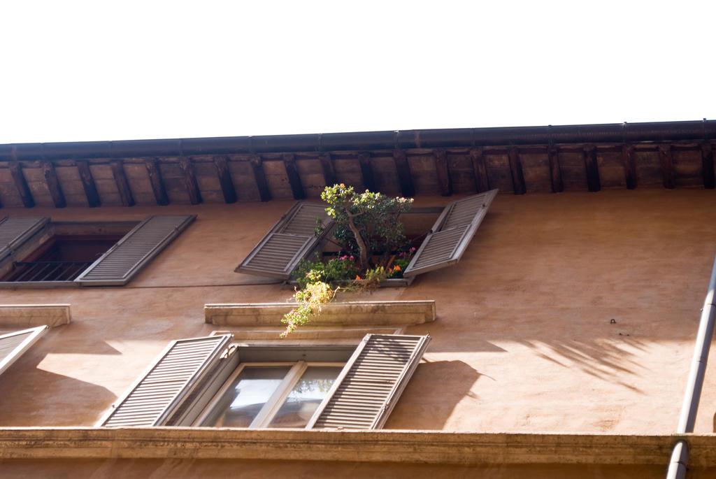 Terrazzi a Roma by masclez on DeviantArt
