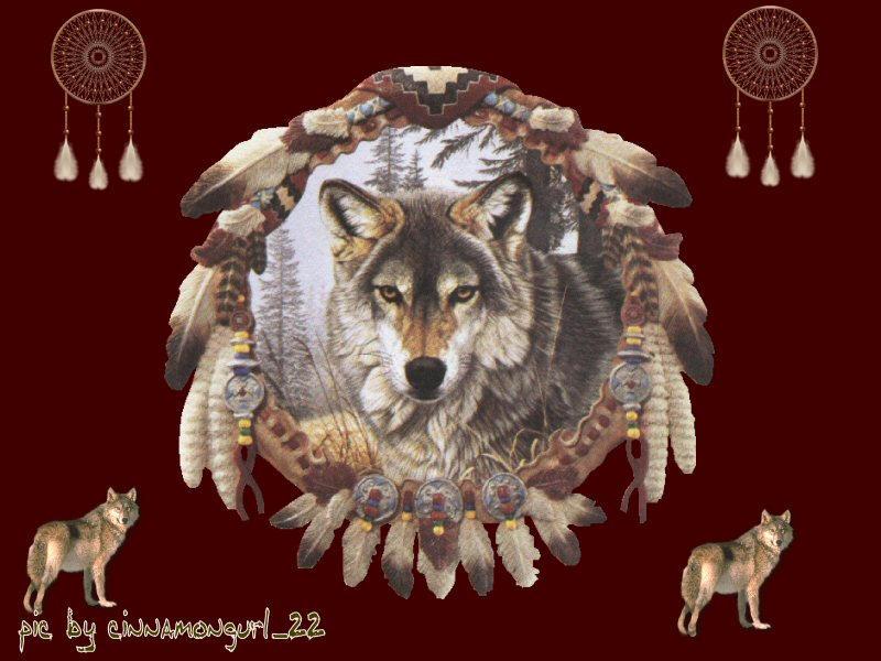 Wolf Dreamcatcher By Cinnamongurl22