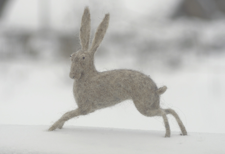 running hare by vriad-lee