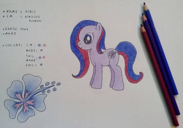 CLOSED ! : Adoptable Pony : Hibis  (Update)