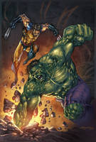 Wolverine Vs Hulk by JUANCAQUE