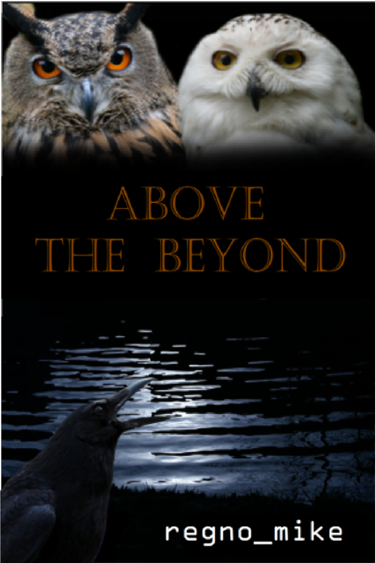 How To Make A Book Cover For Quotev ~ Above the beyond book cover by regnoart on deviantart