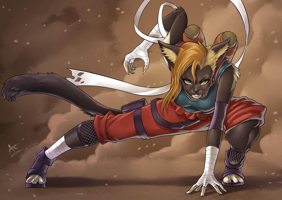 Cat Ninja by playfurry