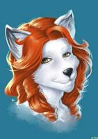 Artc Fox Portrait by playfurry