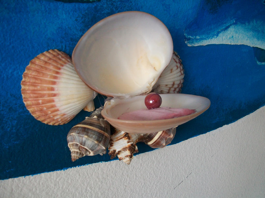 R Clams Good For U Pearl belonged to all ...