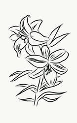 Flowers - Drawing 2