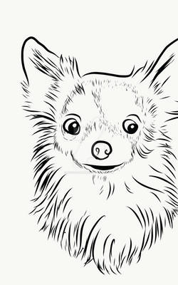 Dogs - Drawing 3