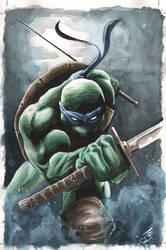 Leonardo cover