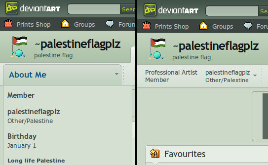 I support Palestine in DA country list