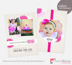 Photographer Template - Little Miss by CherryBloomDesign