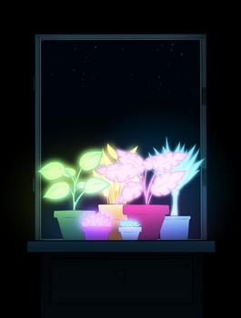 Friendly plants
