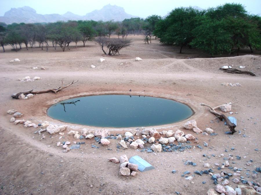 Water Desert, Oasis Rock by thearttheart on DeviantArt Oasis Geography