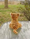 Surveying the Yard by Citrus-Chickadee
