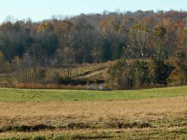 Peaceful Field by Citrus-Chickadee