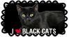 I love Black Cats Stamp by ViolaAtDeviant