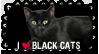 I love Black Cats Stamp by ViolaAtDeviant
