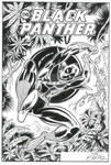 Black Panther Comic Book Cover