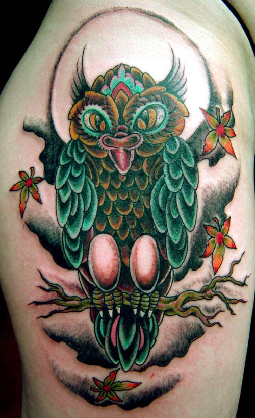 owl'' by dannygarcia